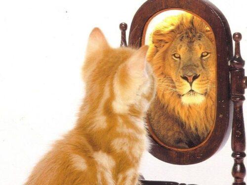 Consejos de autoestima básicos