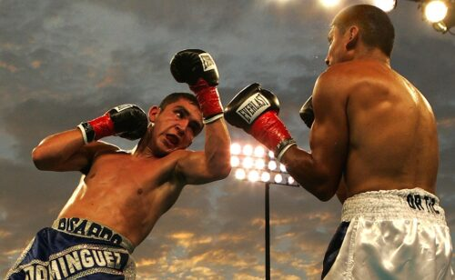 Consejos de boxeo profesional