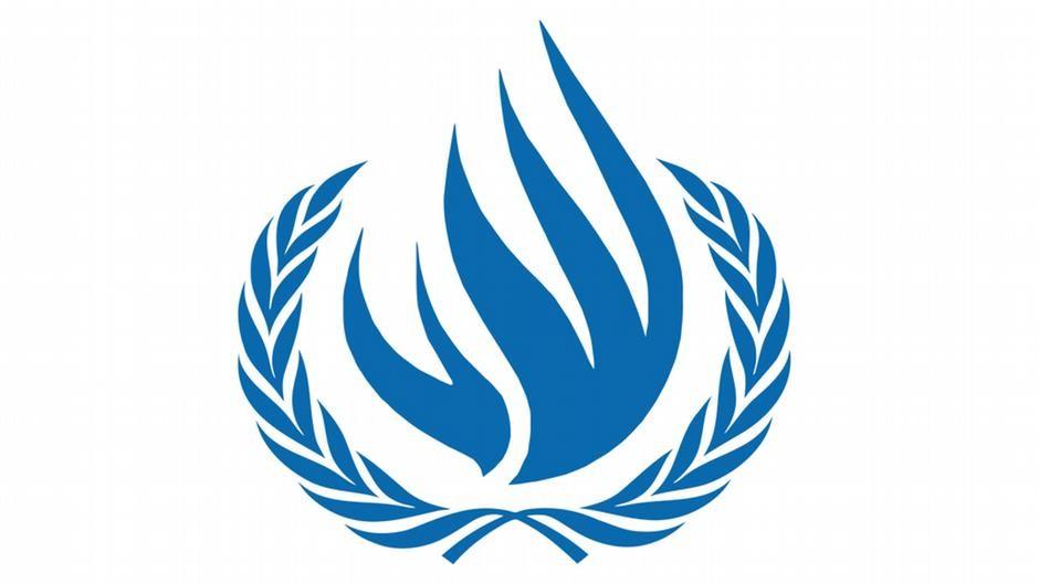 Consejos de derechos humanos