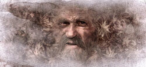 Consejos de viejos sabios